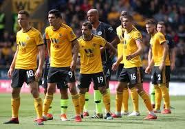 Prediksi Tottenham Hotspur vs Wolverhampton Wanderers 29 Desember 2018